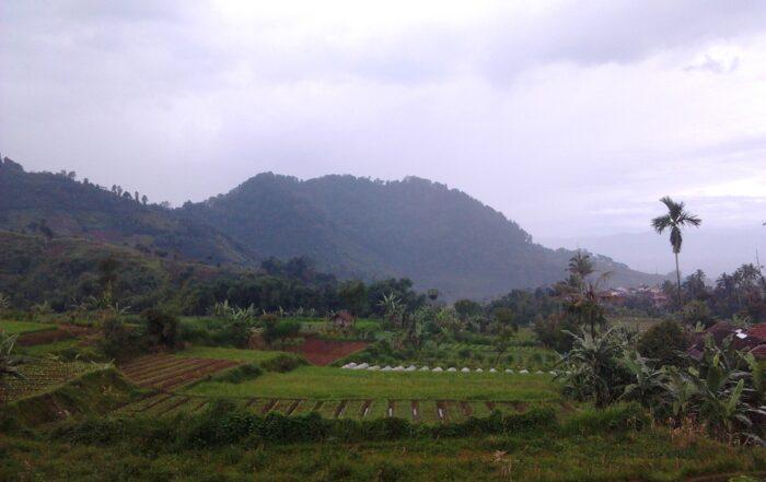 The Food Journey #4 West Java Roy Lesmana